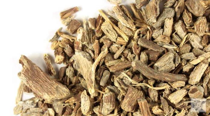 p-412-echinacea-ang-root-cs-wild-crafted